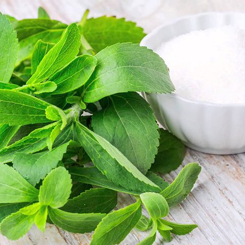Health Tip: Stevia In The Raw, A Substitute For Sugar