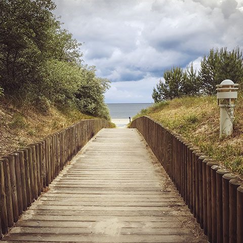 Take A Walk: Accessible State Parks and Beach Boardwalks