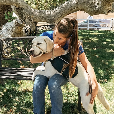 Must Love (Service) Dogs